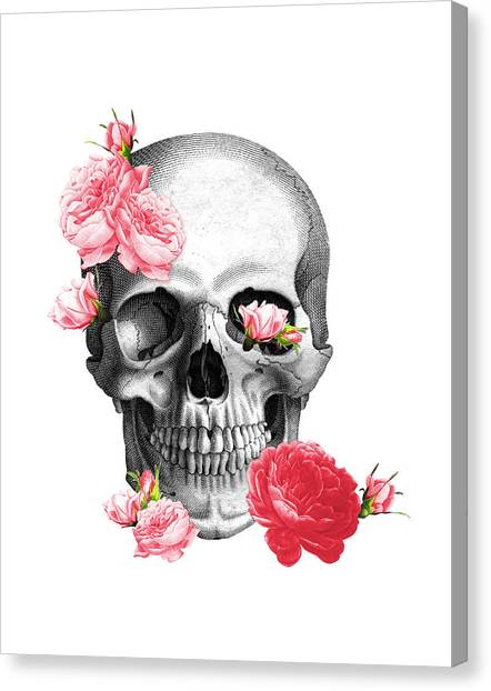 Anatomy Canvas Print - Skull With Pink Roses Framed Art Print by Madame Memento