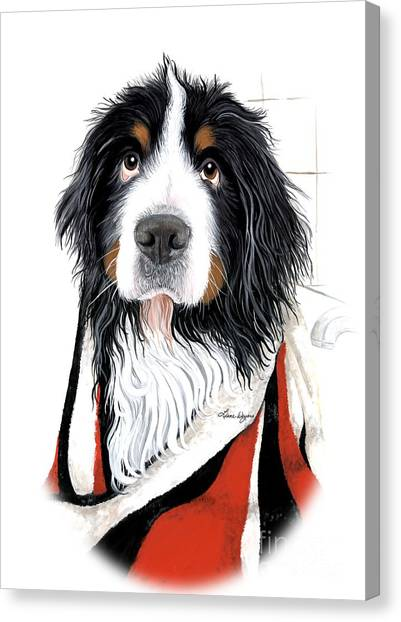 Bernese Mountain Dogs Canvas Print - Skunked - Bernese Mountain Dog by Liane Weyers