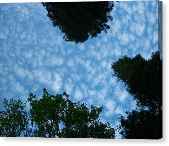 Sky Above Me Canvas Print by Ken Day