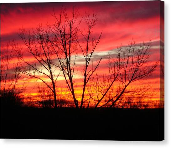 Sky Fire Canvas Print by Ron Moses