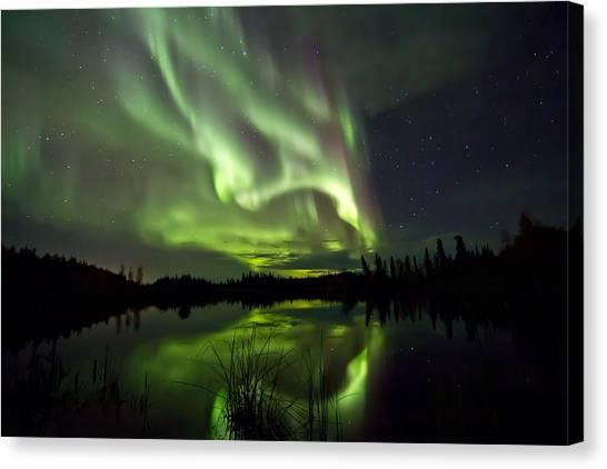 Sky Lights Canvas Print
