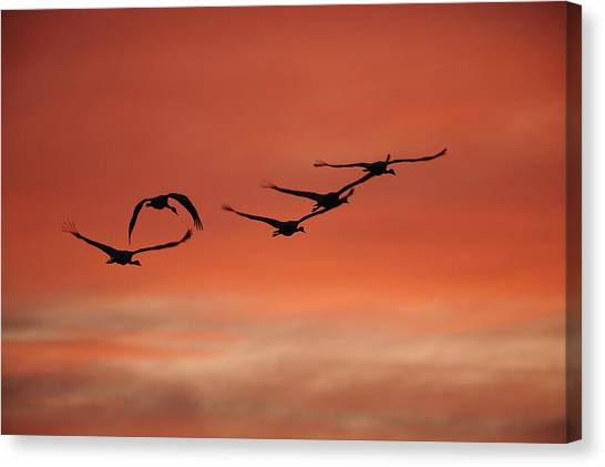 Sky On Fire Canvas Print by Philippe Francis