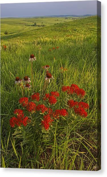 Skyline Bouquet Canvas Print