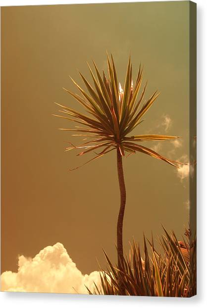 Skyward Bound Canvas Print by Florene Welebny