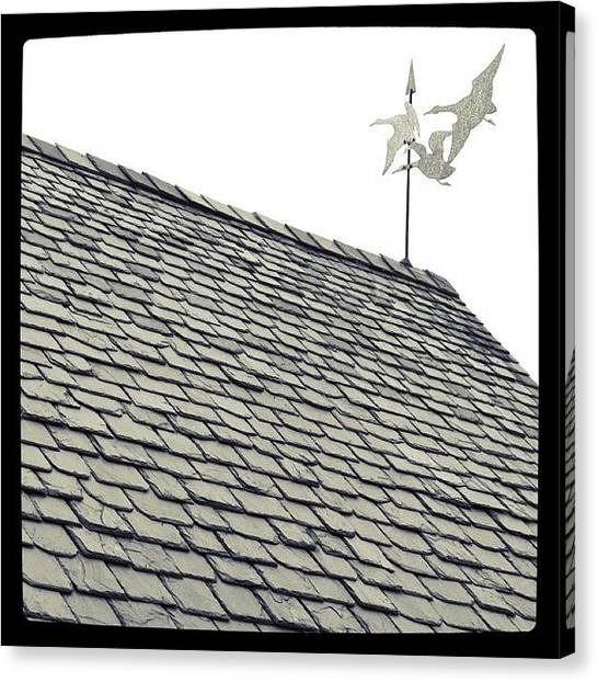 Geese Canvas Print - slate roof and weather vane in BW by Justin Connor