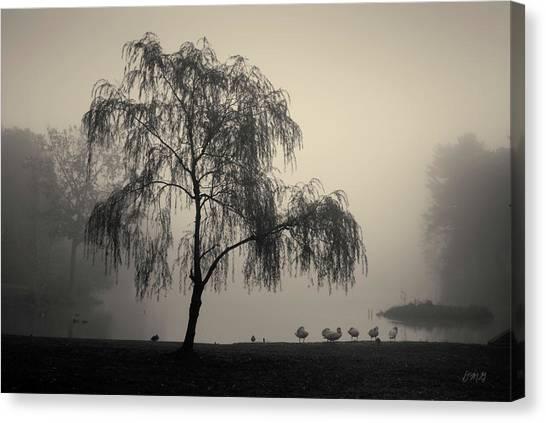 Slater Park Landscape No. 1 Canvas Print
