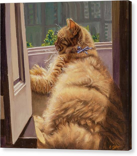 Sleeping Cat Canvas Print by Barbara Tyler Ahlfield