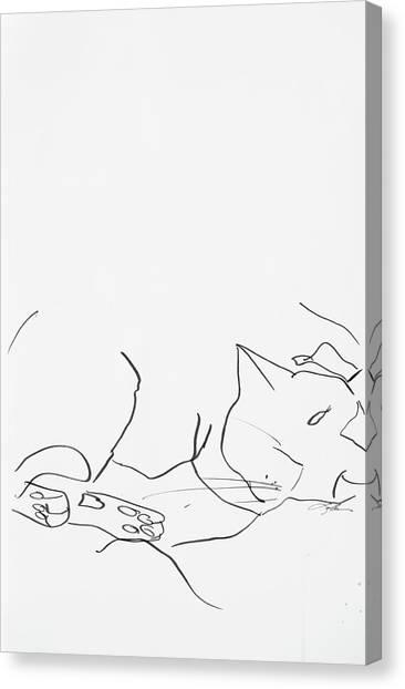 Sleeping Cat II Canvas Print