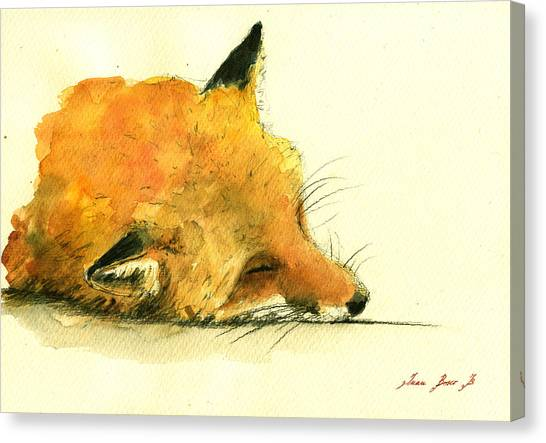 Small Mammals Canvas Print - Sleeping Fox by Juan  Bosco