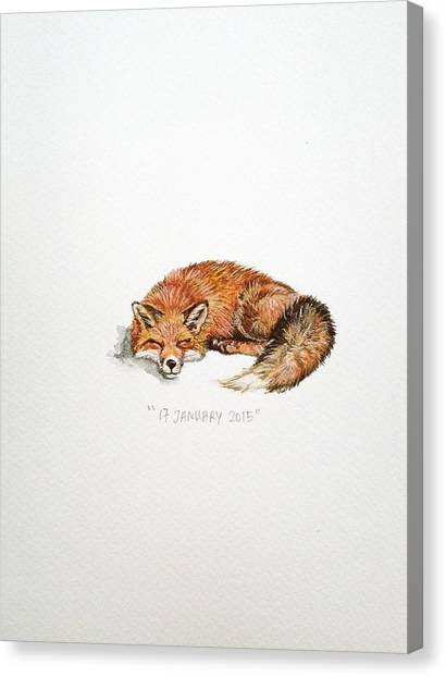 Fox Canvas Print - Sleeping Fox by Venie Tee