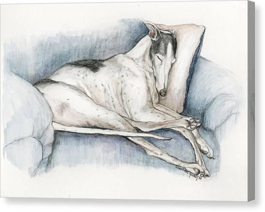Sleeping Greyhound Canvas Print