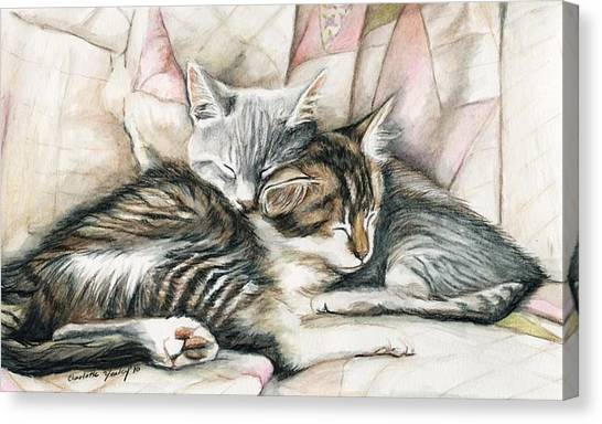 Sleeping Kittens Canvas Print by Charlotte Yealey