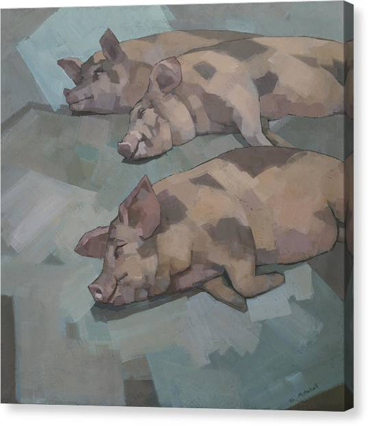 Canvas Print featuring the painting Sleeping Pigs by Steve Mitchell
