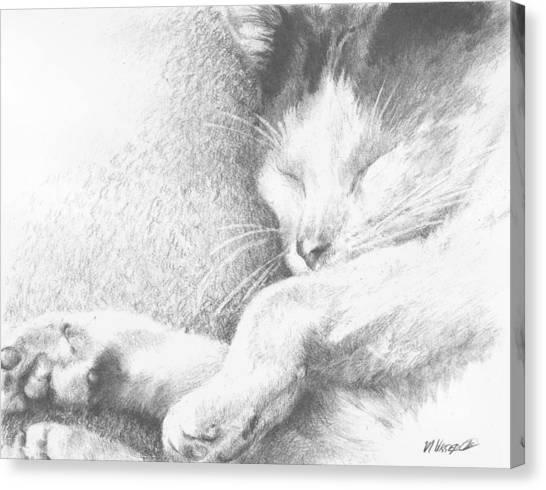 Sleeping Sadie Canvas Print by Meagan  Visser