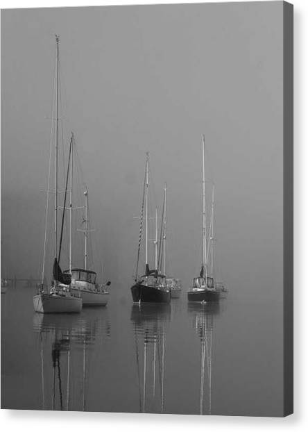 Sleeping Yachts  Canvas Print by Arthur Sa