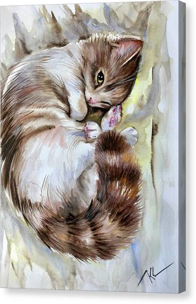 Sleepy Cat 2 Canvas Print