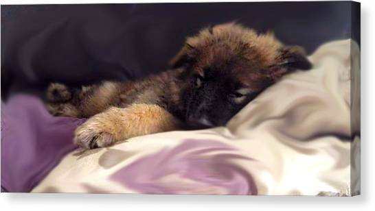 German Shepherds Canvas Print - Sleepy Puppy  by Victoria Mcguinness