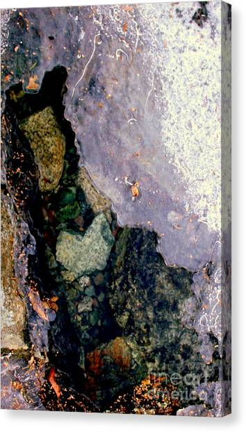 Slice Of Ice Canvas Print by Farzali Babekhan
