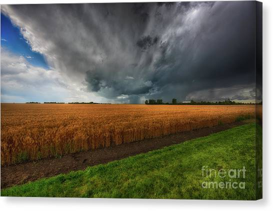 Saskatchewan Canvas Print - Slices Of Saskatchewan by Ian McGregor