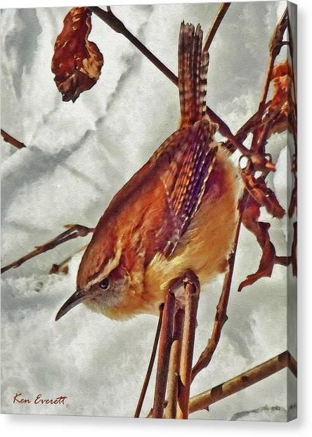 England Artist Canvas Print - Slim Pickens, Carolina Wren by Ken Everett