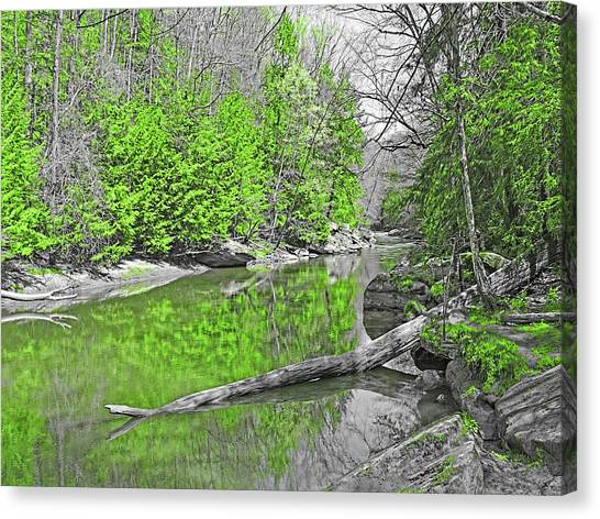 Canvas Print featuring the photograph Slippery Rock Creek In Spring by Digital Photographic Arts