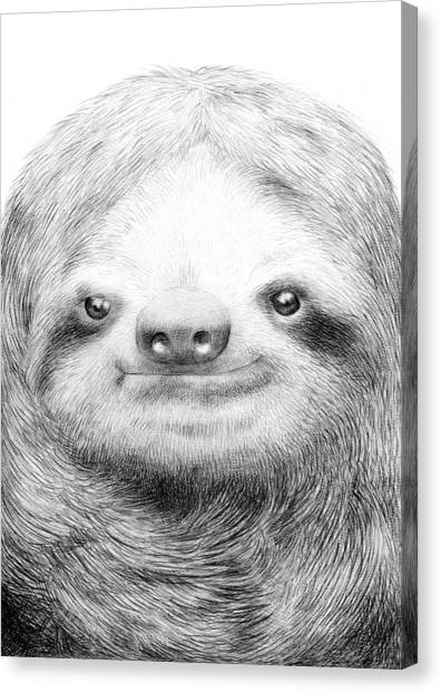 Black And White Canvas Print - Sloth by Eric Fan