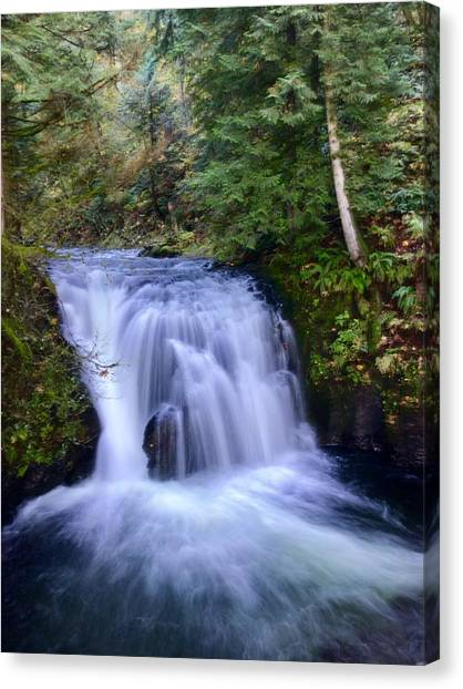 Small Cascade Canvas Print