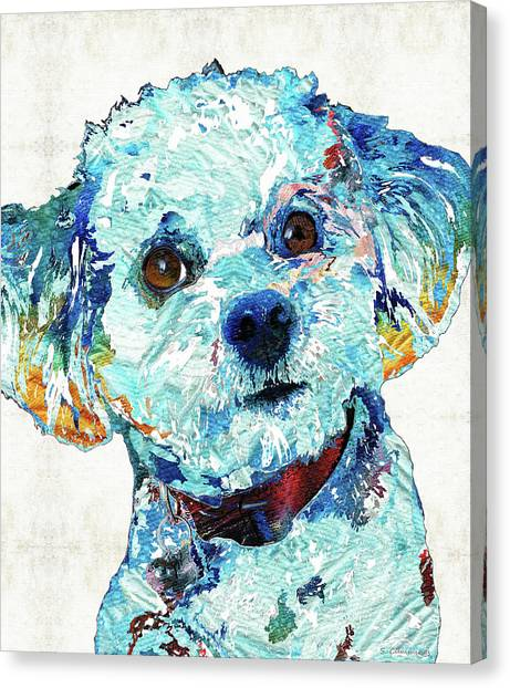 Shih Tzus Canvas Print - Small Dog Art - Who Me? - Sharon Cummings by Sharon Cummings