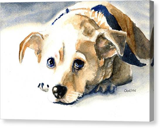 Small Mammals Canvas Print - Small Dog With Tan Short Hair  by Carlin Blahnik CarlinArtWatercolor