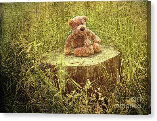 Teddybear Canvas Print - Small Little Bears On Old Wooden Stump  by Sandra Cunningham