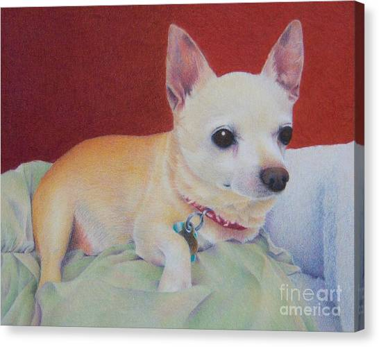 Small Package Canvas Print