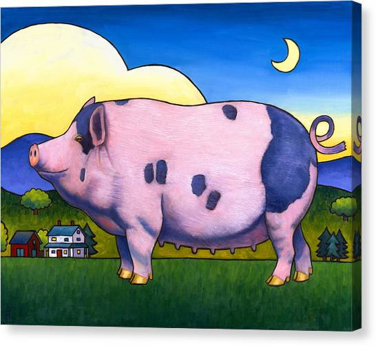 Small Pig Canvas Print