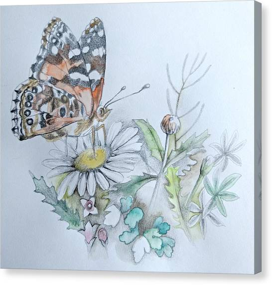 Canvas Print featuring the drawing Small Pleasures by Rose Legge