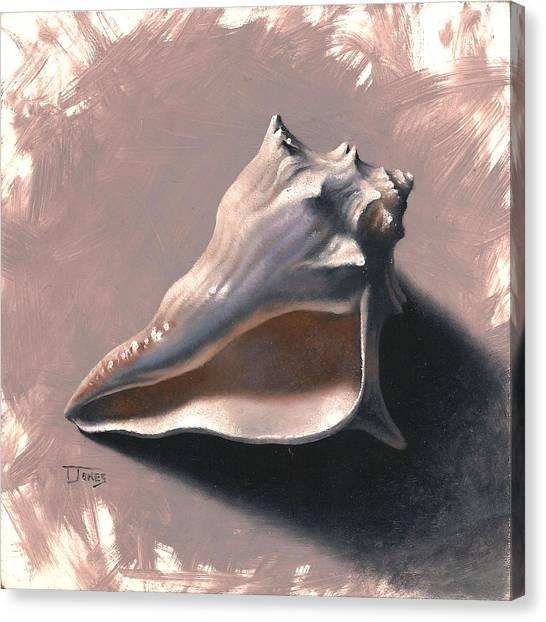 Small Seashell Canvas Print by Timothy Jones