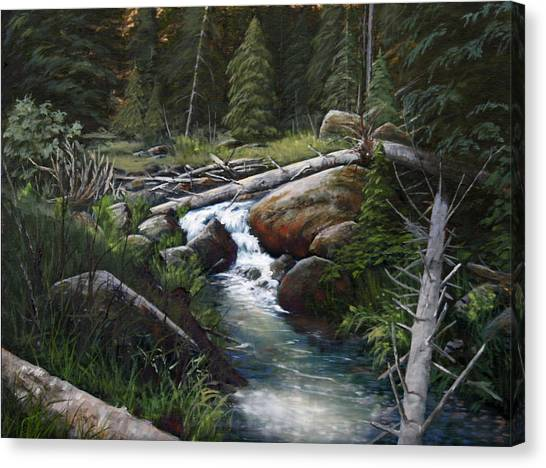 Small Stream In The Lost Wilderness 070810-1612 Canvas Print by Kenneth Shanika