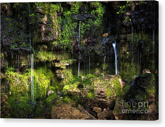 Canvas Print featuring the photograph Small Waterfall by Elena Elisseeva