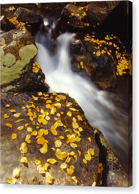 Small Waterfall In Autumn Canvas Print by Douglas Pulsipher