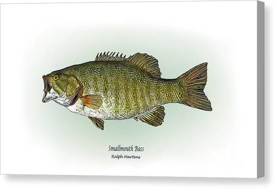 Bass Fishing Canvas Print - Smallmouth Bass by Ralph Martens
