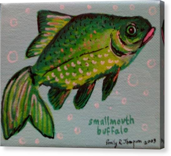 Smallmouth Buffalo Canvas Print by Emily Reynolds Thompson
