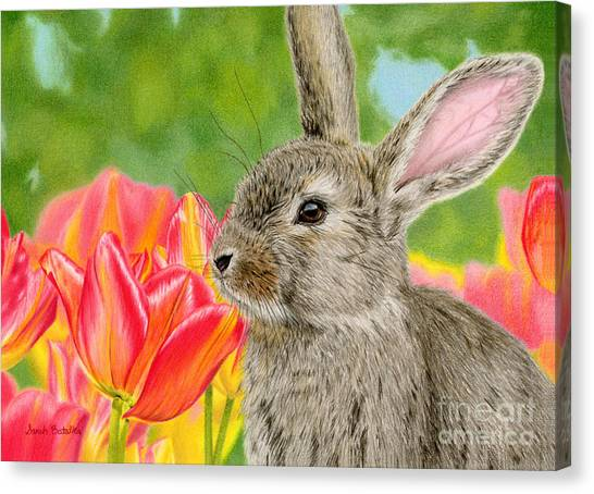 Hare Canvas Print - Smell The Flowers by Sarah Batalka