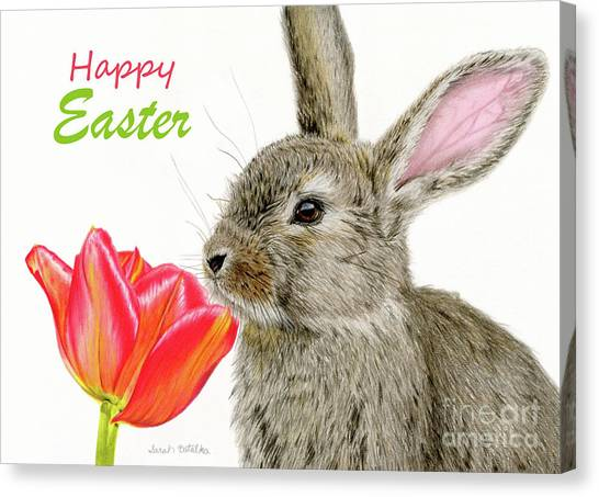 Easter Bunny Canvas Print - Smells Like Spring- Happy Easter Cards by Sarah Batalka
