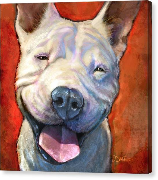 Pit Bull Canvas Print - Smile by Sean ODaniels