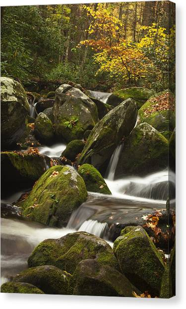 Smokies Waterfall Canvas Print by Andrew Soundarajan