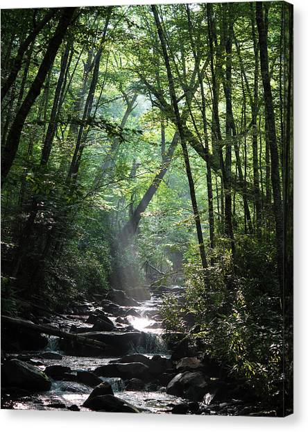 Smoky Canvas Print