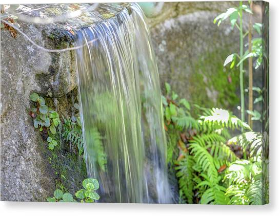 Canvas Print featuring the photograph Smooth Water by Raphael Lopez
