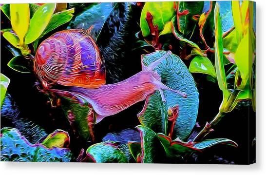 Snail 12 Canvas Print