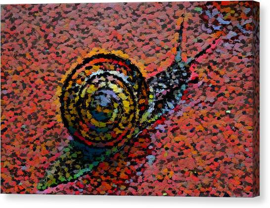 Canvas Print - Snailstudy In Red by Modern Art