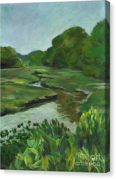 Snake Like Creek I Me Canvas Print