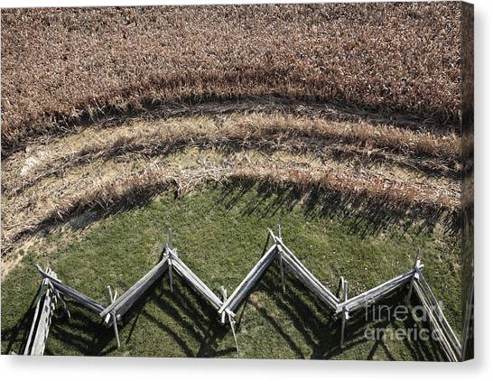 Snake-rail Fence And Cornfield Canvas Print