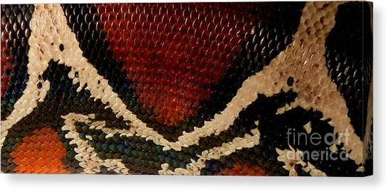 Snake's Scales Canvas Print